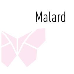Malard