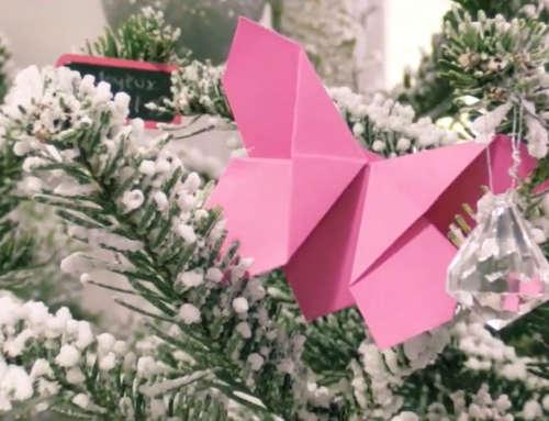 SÉQUENCE PAPS – Noël
